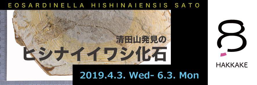 【文化歴史コーナーHAKKAKE】清田山のヒシナイイワシ化石展示