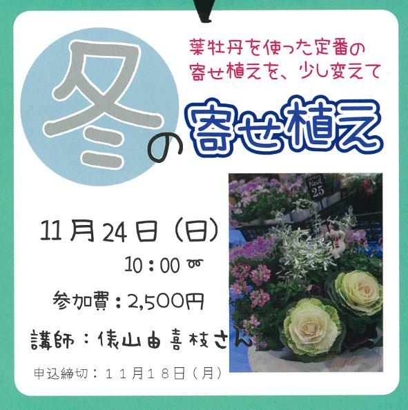【園芸講座】冬の寄せ植え